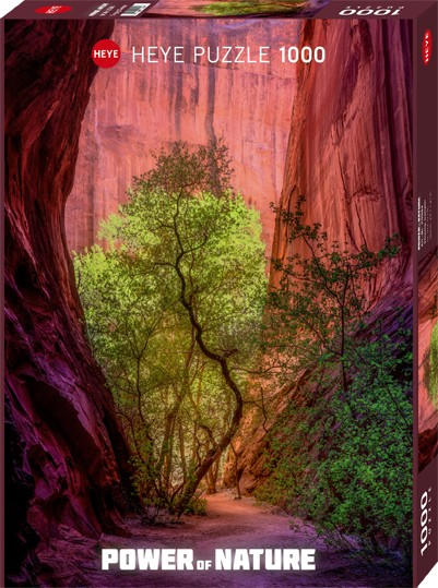 Puzzle Singing Canyon POWER OF NATURE Standard 1000 Pieces